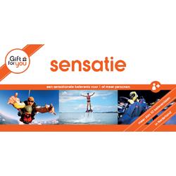 GFY Sensatie